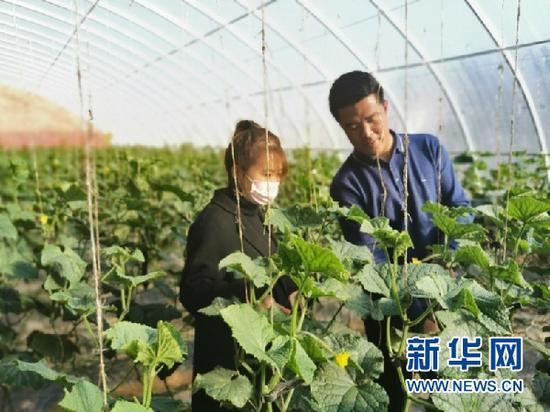 花儿新村农民正在劳动。(照片由受访者提供)
