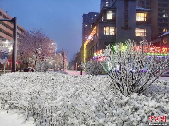 图为雪景装扮小城夜色。 张宏 摄