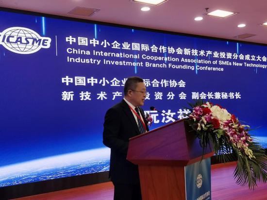 新技术产业投资分会副会长兼秘书长阮汝祥报告分会2021年度工作计划安排