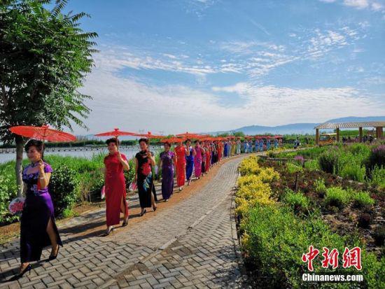 旗袍爱好者在天蓝、水清、草绿的湿地公园展示旗袍之美。吴学珍 摄