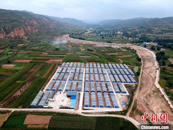 9月12日,航拍甘肃省陇西县菜子镇二十铺村食用菌种植基地的香菇大棚。
