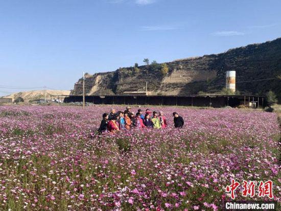 图为10月中旬,游客在麻家寺村八瓣梅花海中拍照打卡。 黄婉怡 摄