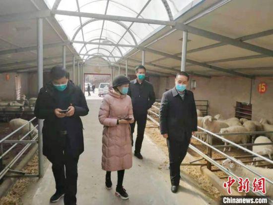 图为李艳(中)邀请养殖方面专家参观羊舍。(资料图) 受访者供图