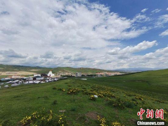 图为7月初,甘肃甘南藏族自治州当周草原美景。 韦德占 摄
