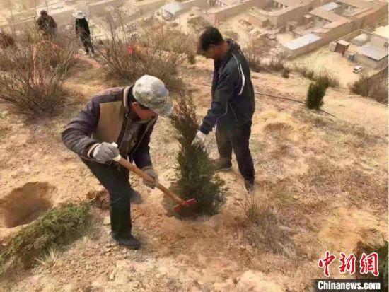 """为了绿化山体,共同吃上""""绿色饭"""",永丰村干部与村民一同栽树。(资料图) 金德伟 摄"""