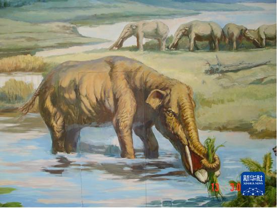 铲齿象生活场景复原图(和政古动物化石博物馆供图)
