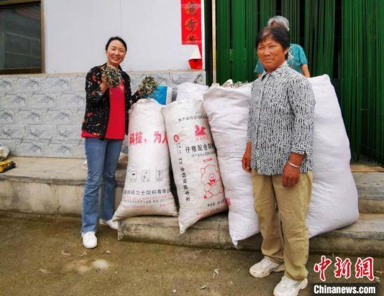 在甘肃省陇南市徽县水阳镇石滩村,梁倩娟(左一)从村民手里收购艾叶。(资料图) 赵治极 摄
