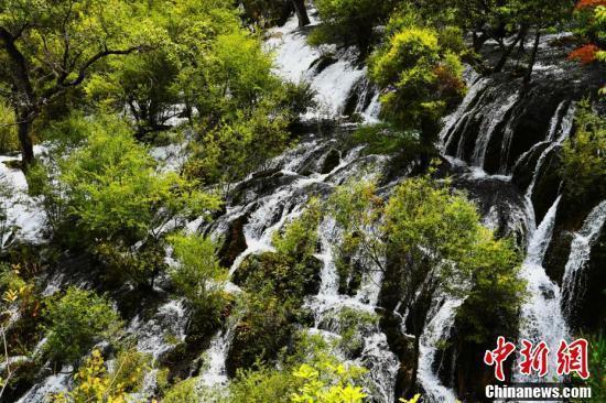九寨沟景区树正瀑布风光。
