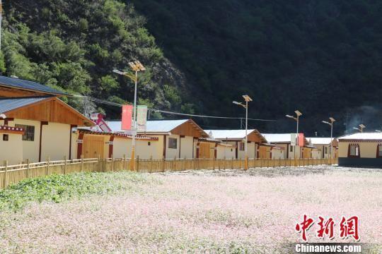 图为甘南州新建设的生态文明小康村。 钟欣 摄