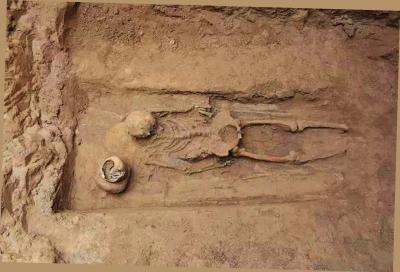 墓葬内人骨