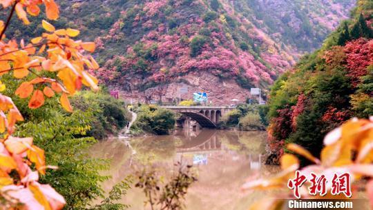 图为灵官峡秋景。 张怀林 摄