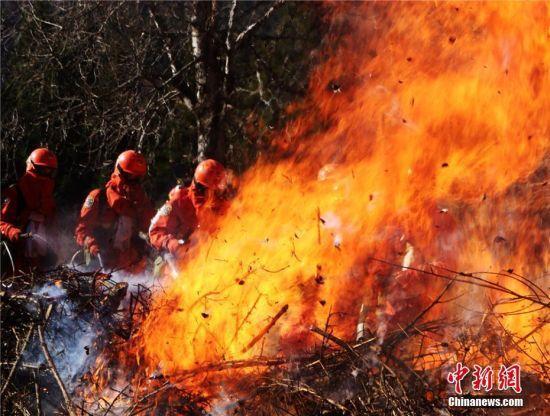 武警陇南市森林支队迭部大队官兵组织冬季灭火实战演练。陈晓波 摄
