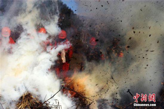 进入冬季,官兵在野外林区进行模拟实战灭火训练。图为11月7日,官兵清理烟点。陈晓波 摄