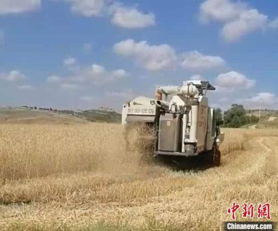 图为强彩霞管理农民专业合作社机械化耕作。(资料图) 强彩霞 摄