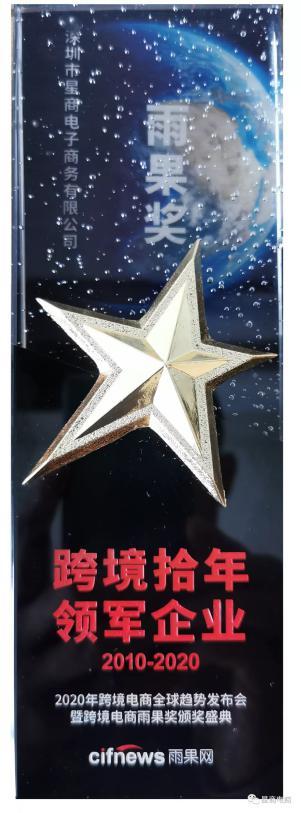 雨果奖·跨境拾年领军企业