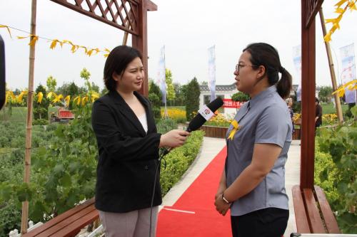 图为:清颐园副总经理秦美仙接受媒体采访