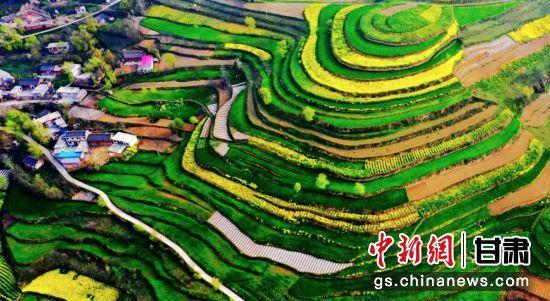 """甘肃陇南市是""""绿色宝库"""",冬无严寒、夏无酷暑,非常适宜养生养老。图为陇南境内梯田。(资料图)张平良"""