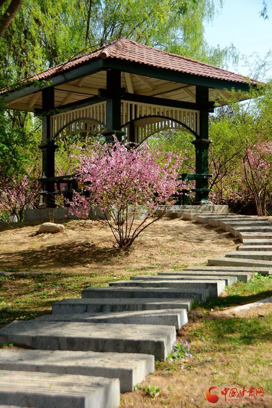 """""""曲径通幽处"""",沿着小石板路蜿蜒而上,鲜花、绿树、小亭构成了一个小世界。"""