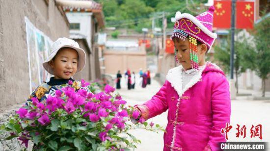 图为游客在迭部县谢协村赏花。(资料图) 魏建军 摄