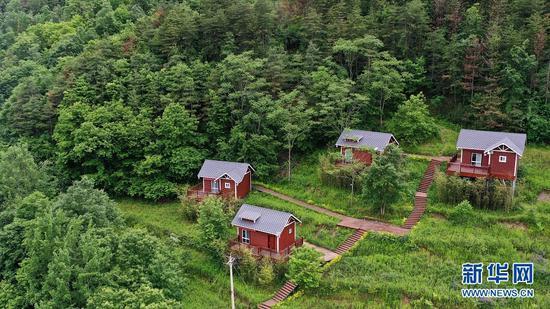 这是5月20日拍摄的陇南市康县长坝镇花桥村的森林小木屋(无人机照片)。新华社记者 郎兵兵 摄