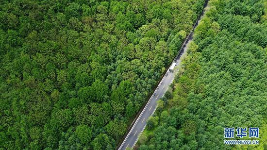 一辆旅游大巴行驶在陇南市宕昌县官鹅沟景区内的公路上(无人机照片,5月18日摄)。新华社记者 陈斌 摄