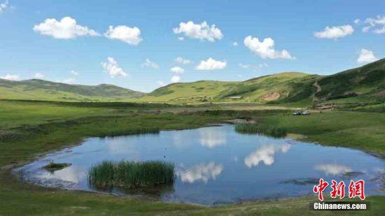 图为岷县境内占地90余万亩的湿地草原水清草绿。 王金生 摄