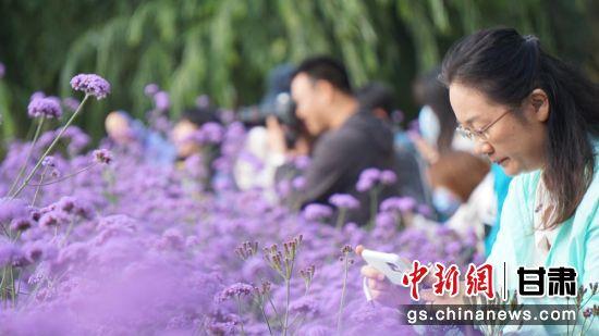 图为游客参观嘉峪关东湖公园花海。(资料图) 魏建军 摄