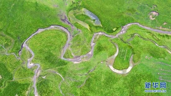 这是7月15日拍摄的玛曲县阿万仓湿地(无人机照片)。新华社记者 马莎 摄