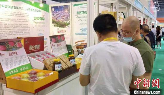 """日前,在2021广州国际农产品博览会上,甘肃平凉市灵台县的""""致富果""""惊艳亮相羊城,并获得金奖。灵台融媒体中心供图"""