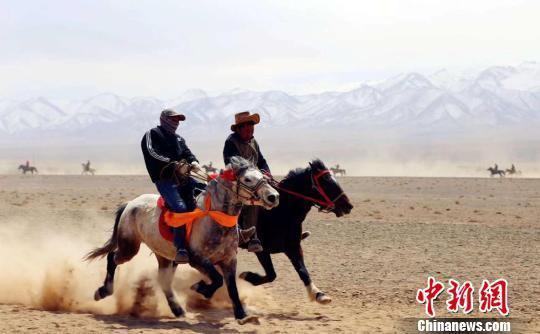 图为广袤的戈壁滩上,骑手和坐骑奋勇向前。孟根朝力摄