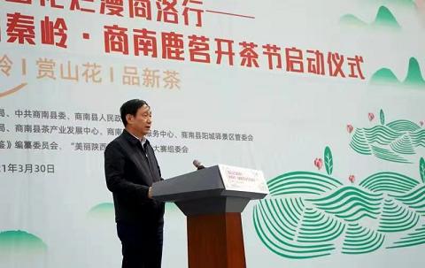商南县委书记许水兆致辞