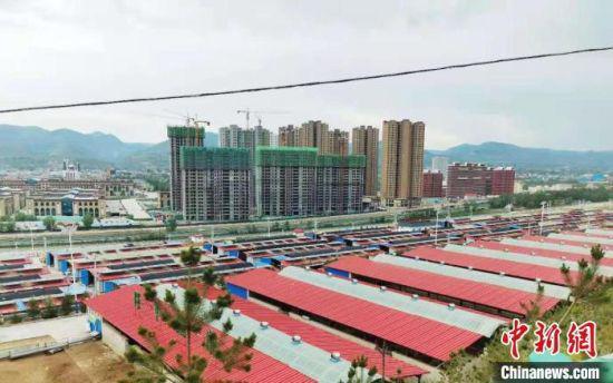 5月19日,甘肃省易地搬迁后续扶持工作现场会在临夏州召开。图为广河县康家模式的养殖区域。 艾庆龙 摄