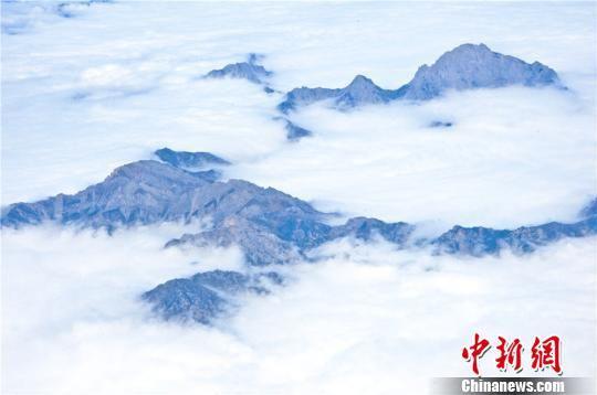 """甘肃省高楼山现""""云海""""景观,飘逸的云雾在峰林间蜿蜒萦绕。 王将 摄"""