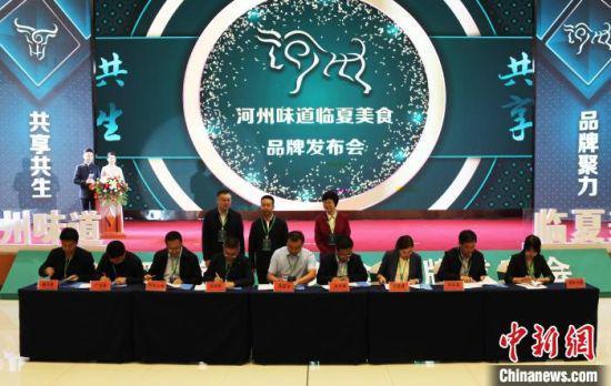 近日,甘肃临夏州各县市与河州力量签订了产业服务框架合作协议。图为签订现场。 冯元鹏 摄