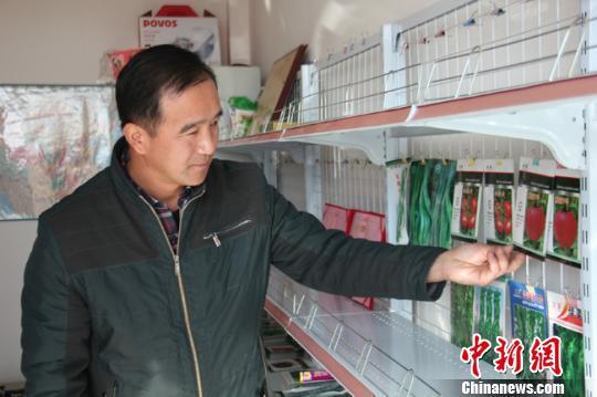 资料图。图为王富才在介绍自己研发的蔬菜品种。 张玲 摄