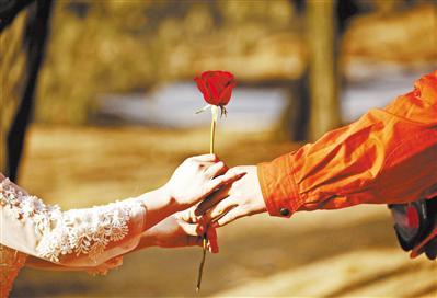 玫瑰送给最爱的人。