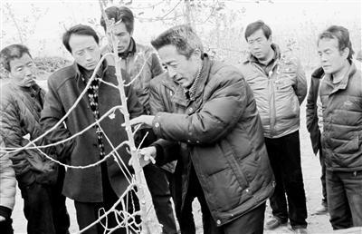 靳志强(前一)给果农传授修剪技术。