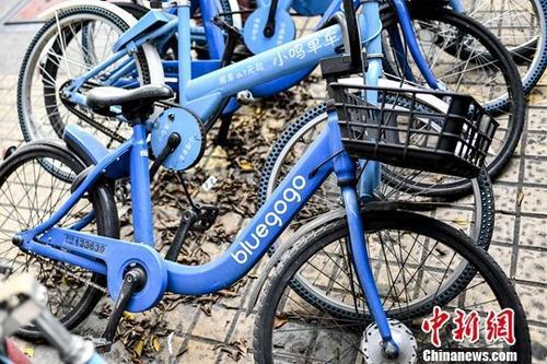 资料图:共享单车。中新社记者陈骥旻摄
