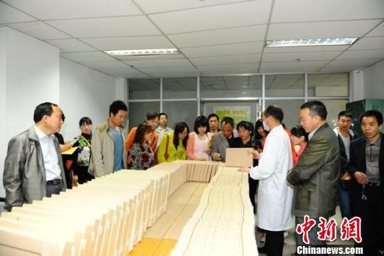 资料图:甘肃省档案局工作人员学习档案整理技巧。 黄静 摄