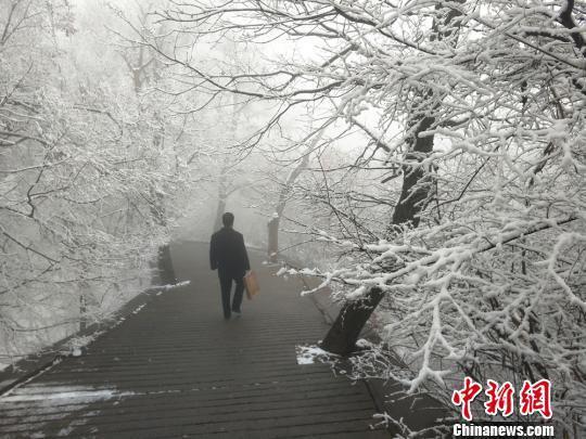 图为游人雪后游山。 徐振华 摄
