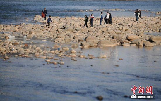 市民在裸露的黄河河床上玩耍。杨艳敏 摄