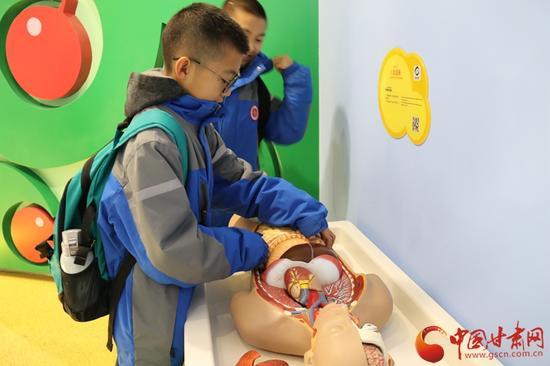 小学生们在认真拼凑人体中的各个器官