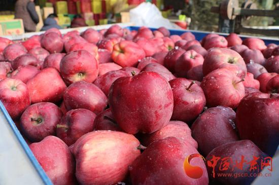 刚从冷库中搬出来的苹果