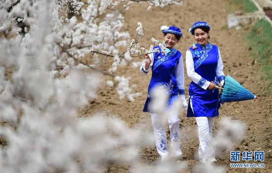 3月29日,两名游客在唐汪镇杏园内踏青赏花。新华社记者 陈斌 摄