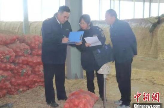 图为兰州海关工作人员检验进出口农产品