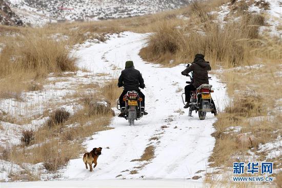 """1月15日,""""小黄""""和三岔资源管护站护林员一起巡山。"""