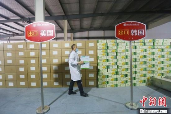 近年来,庆阳农特产品争相出口海外。