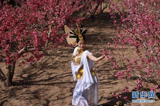 """4月22日,敦煌""""飞天""""舞者在甘肃省敦煌市七里镇杜家墩村的桃园中展示敦煌舞动作。"""