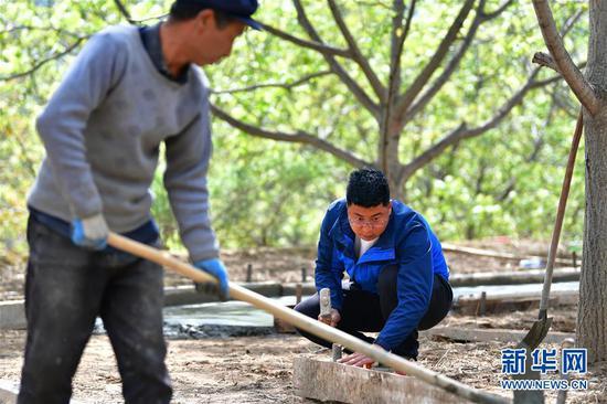 王磊(右)与合作社农户一起修建观光走廊(4月23日摄)。新华社记者 陈斌 摄