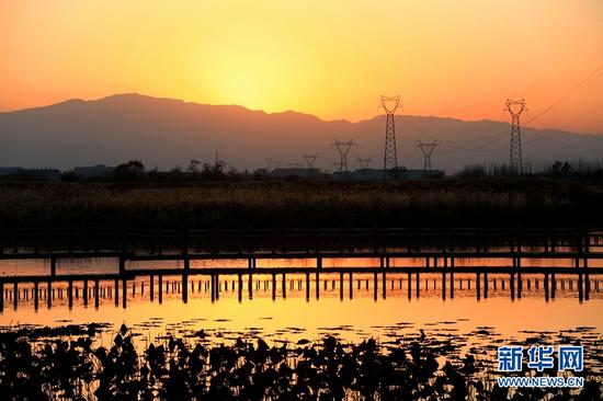 【大美甘肃】戈壁湿地夕照如画